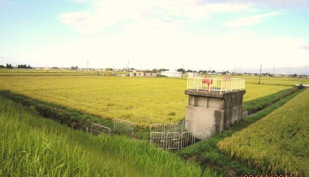 こだわり米の舞台