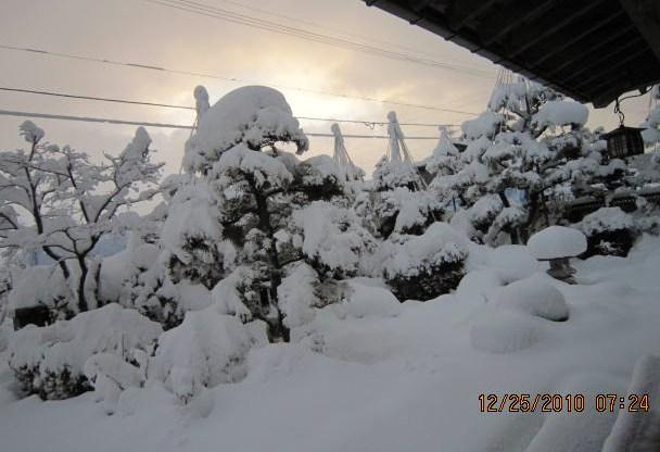 雪の朝(12・25)