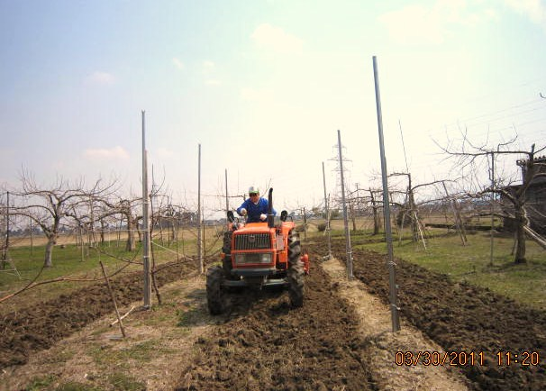 りんご園トラクター作業