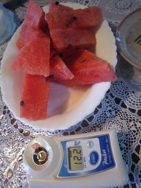 西瓜の糖度は12・2