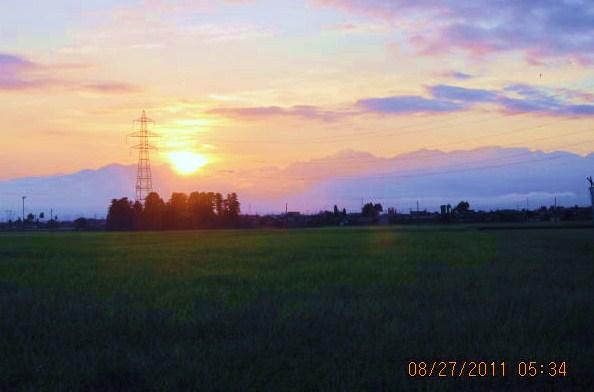 鎮守の森と日の出