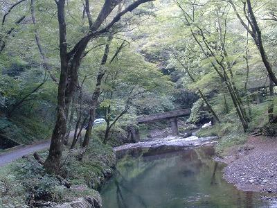 shukusho-CIMG2461.jpg