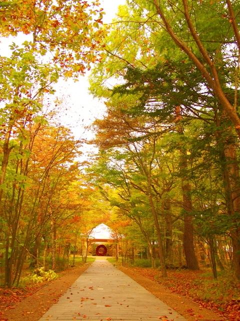 軽井沢・教会