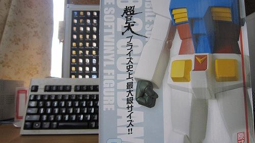 IMG_0005_20100822152538.jpg