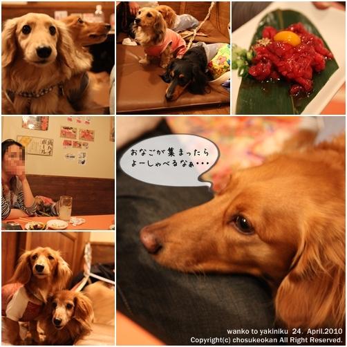 100429 blog4
