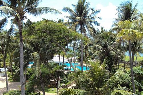 phuket 2011 006