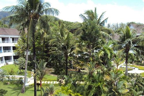 phuket 2011 004