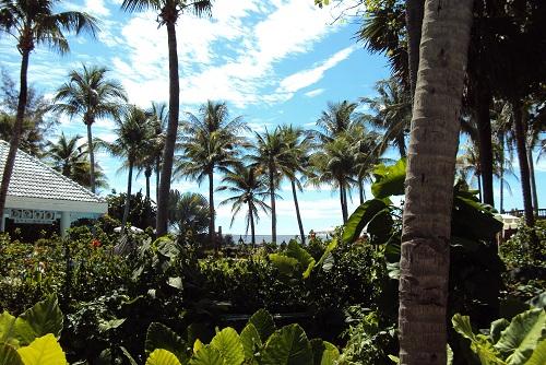 phuket 2011 016