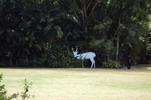 phuket 2011 035