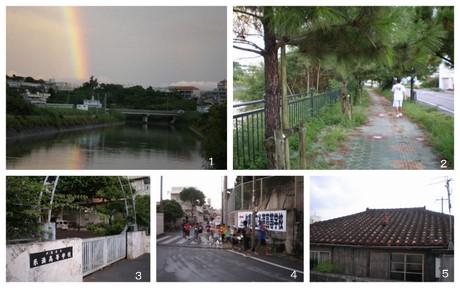 2010-09-161.jpg