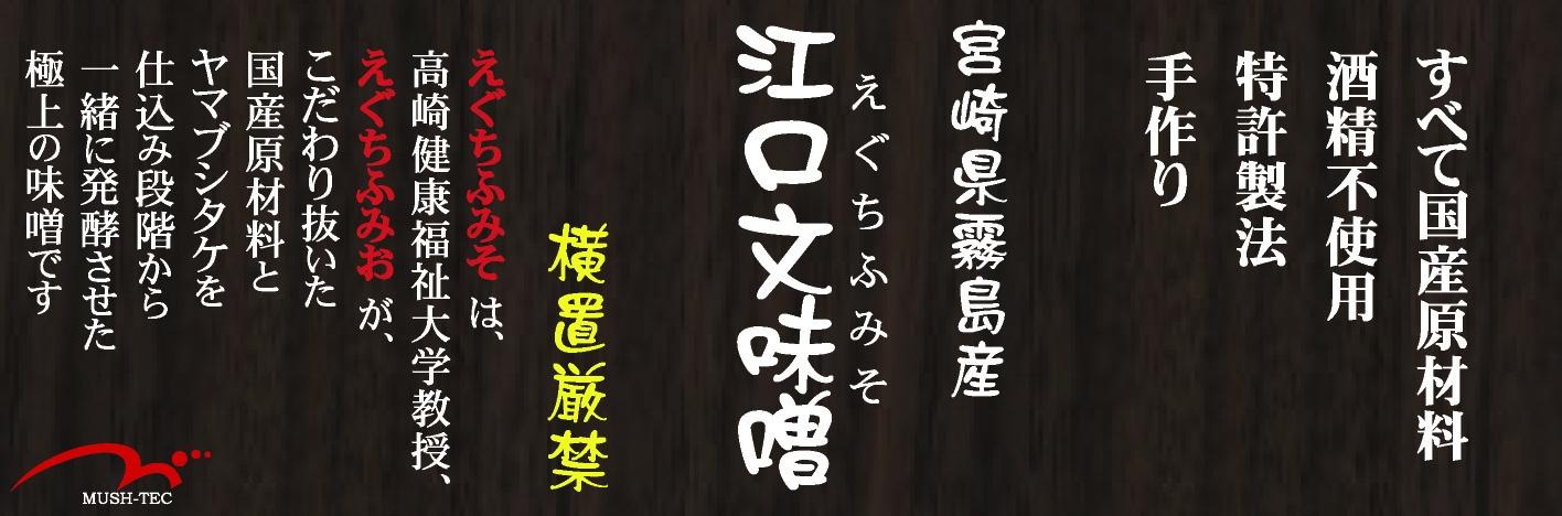 20100511_江口文味噌500gラベルのみのコピー