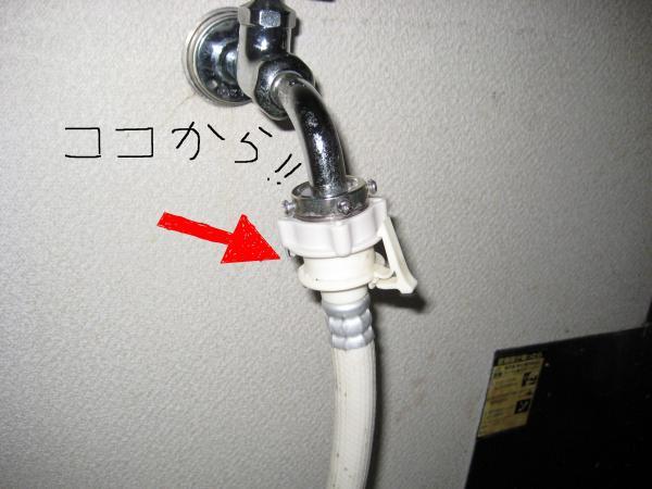 蛇口6_convert_20110904140204