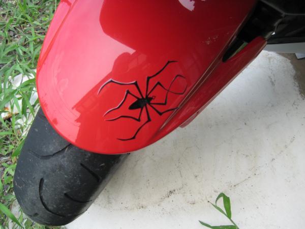 F蜘蛛_convert_20110908192642