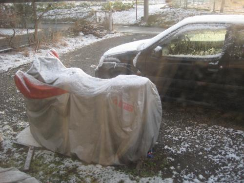 雪降った_convert_20120124193007