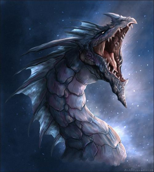 dragon03_convert_20120101131940.jpg