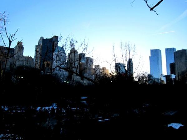 Central Park 030610_2