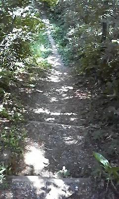 立山山麓2010082202