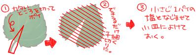100530b.jpg