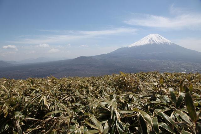 富士を見ながら