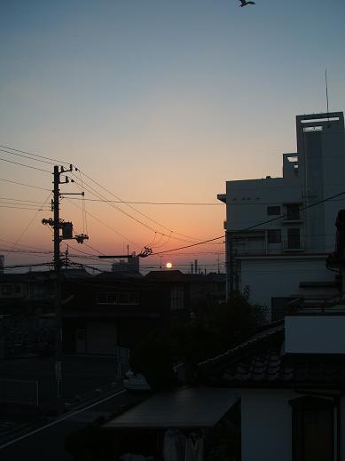 画像デジカメ 001