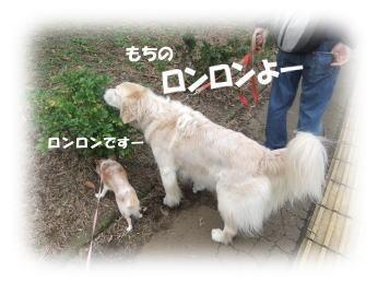 201010311.jpg