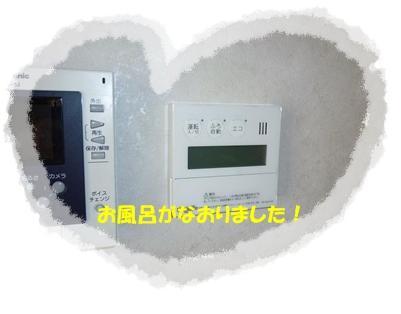 20110531ohuro