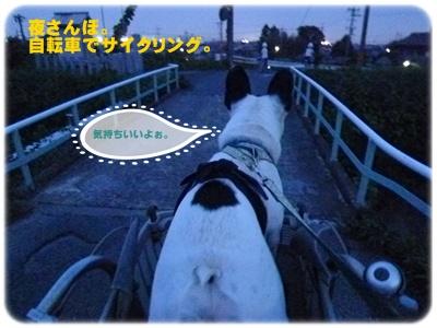 20110702夜さんぽ