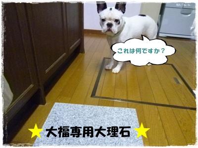 20110709大理石