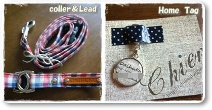 20110807coler&lead