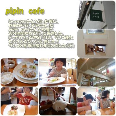 20110824pipincafe