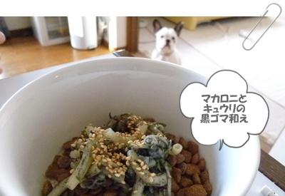 20110924food1