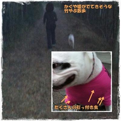 20111029take
