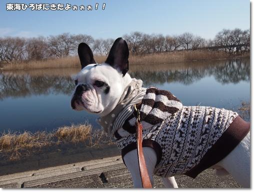 20120117東海ひろば