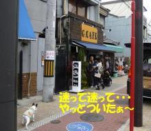 大福Cafe-20110320b