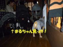 大福Cafe-20110320maru