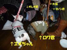 大福Cafe-201103205buhi