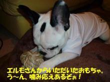 大福Cafe-20110323エルモおもちゃ