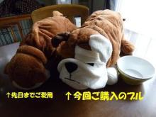 大福Cafe-ikeabull