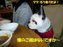 大福Cafe-20110324dai1