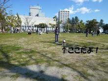 大福Cafe-20110327aa