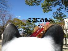 大福Cafe-20110327b