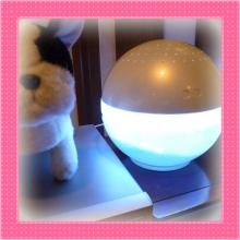 大福Cafe-0502マジックボール