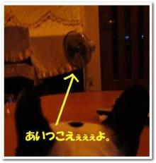大福Cafe-0510扇風機