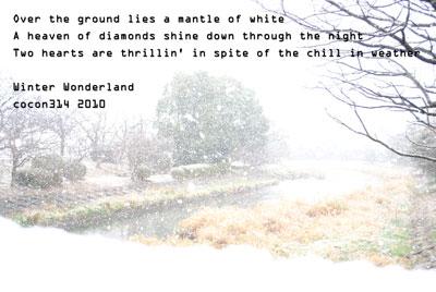 大雪が降った日