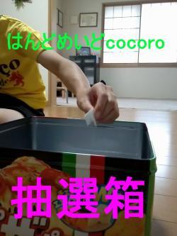 CAM00242_convert_20130513163423.jpg