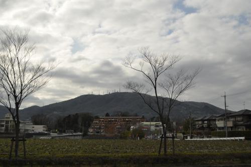 3月8日生駒山500