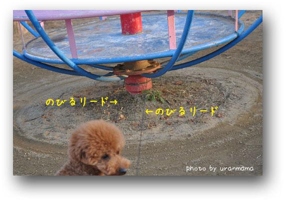 DSC_9169.jpg