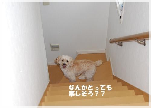 DSC_1636.jpg