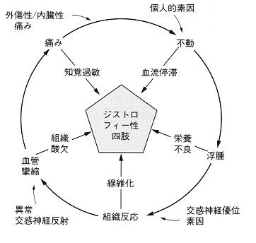RSDzu3.jpg