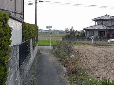 20100412g.jpg